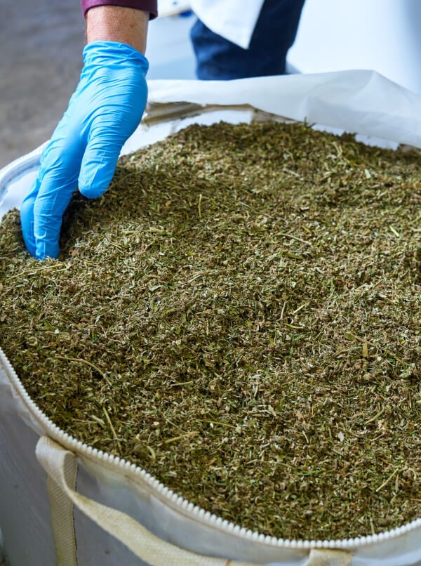 Hemp bag for extraction